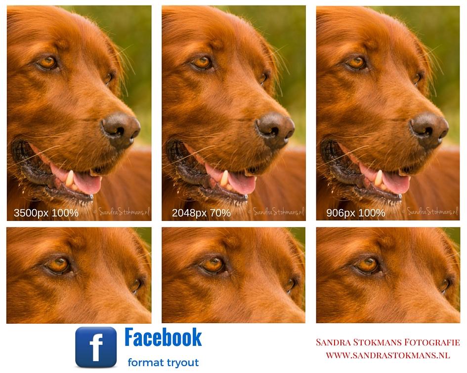 Foto op Facebook zetten met beste kwaliteit , Foto met beste kwaliteit op Facebook zetten, tip by Sandra Stokmans