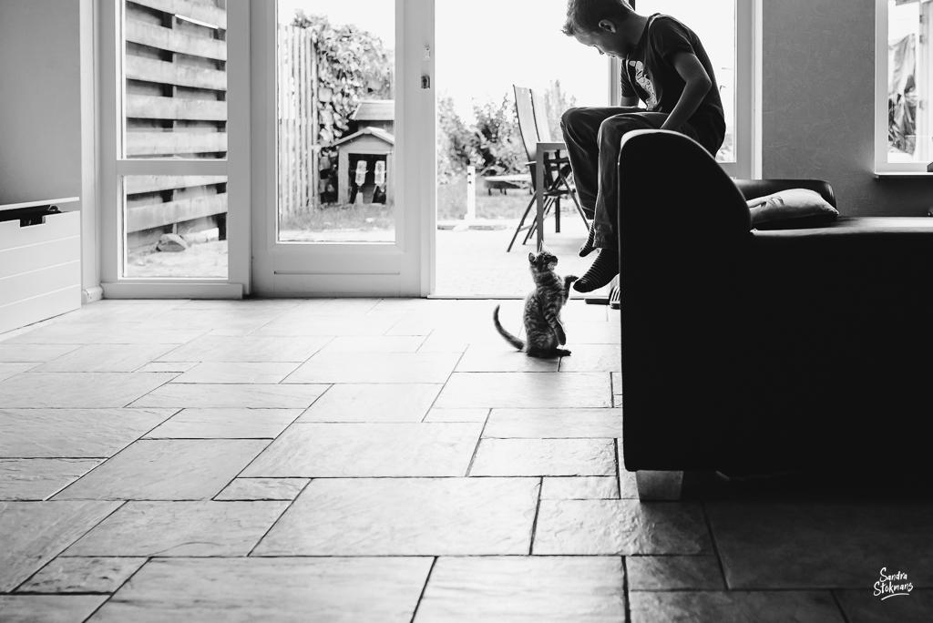 documentaire familie fotografie, Day in the Life, jongentje met kitten, image by Sandra Stokmans Fotografie
