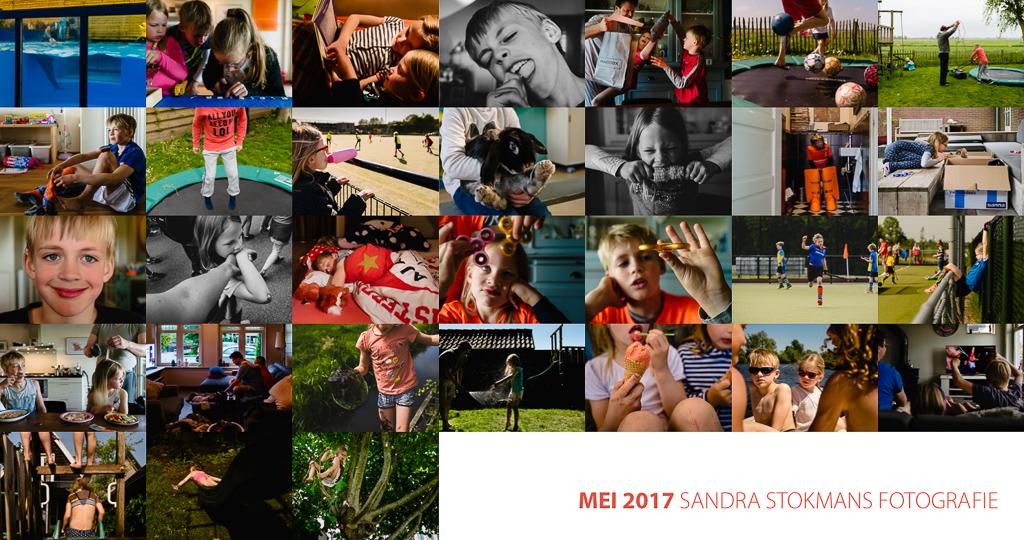 365 Project, dagelijks foto's maken, Sandra Stokmans Fotografie
