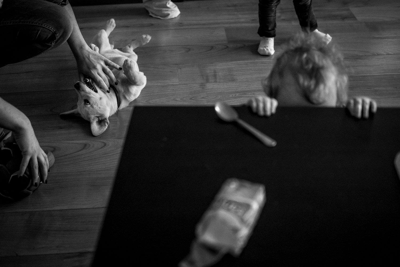 Huiselijk tafereel met hond, foto door Katrin Küllenberg