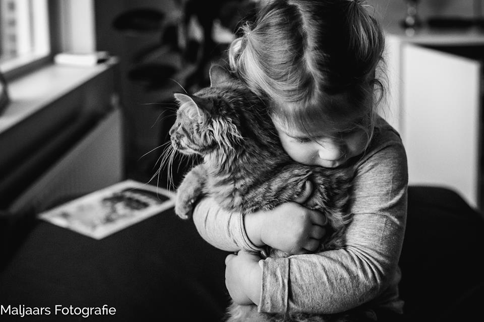 Meisje knuffelt kat, foto door Marolijn Maljaars van Maljaars Fotografie