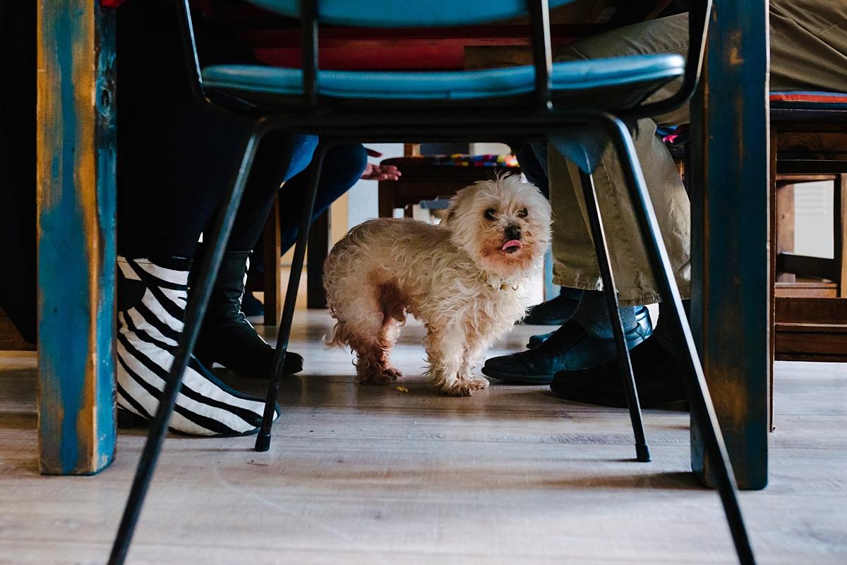 Gezinsfotografie, Day in the Life in Assen, lunchen, foto door Sandra Stokmans Fotografie
