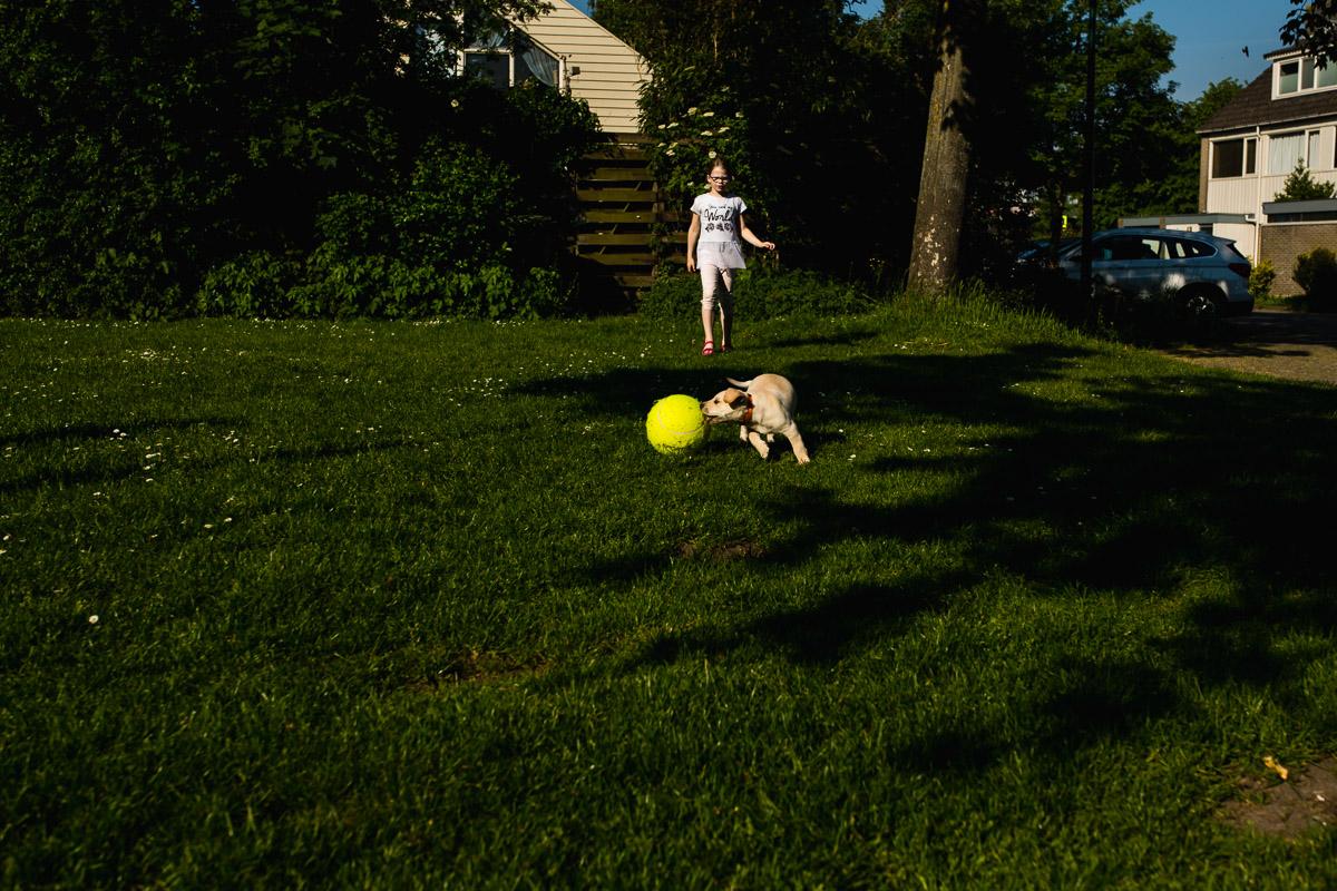 Labrador pup spelen met meisje buiten, familie fotografie, foto door Sandra Stokmans Fotografie